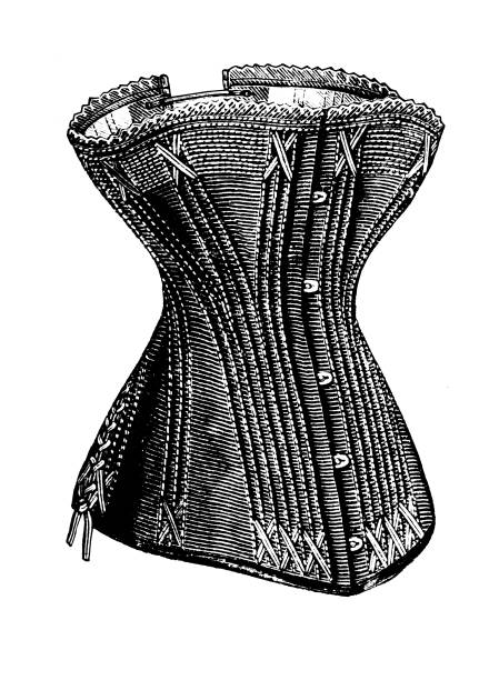 Vintage corset victorian illustration Vintage etching print on white background corset stock illustrations