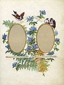 Very old floral frame.