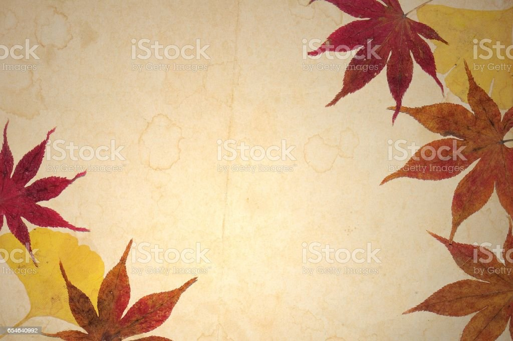 Vintage frame with autumnal leaves on ancient sepia paper. vector art illustration
