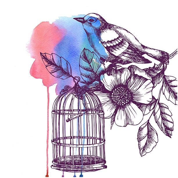 illustrations, cliparts, dessins animés et icônes de carte romantique vintage avec oiseaux et cage, fleurs et peinture à l'eau. - dessin cage a oiseaux