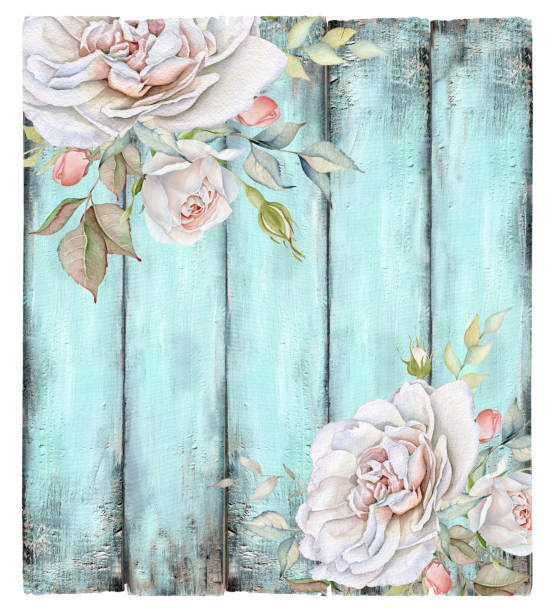 Vintage Turquoise Wooden Background with White Rose Bouquets Hand drawn image montage of watercolor roses and turquoise wooden background. Add text and create your own background with this texture. shabby chic stock illustrations