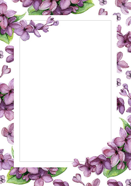 royalty free lilac flower clip art vector images illustrations