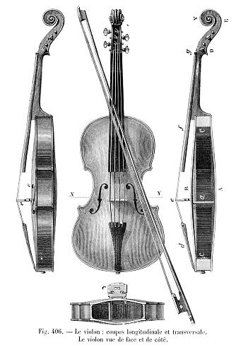 Violin engraving 1881