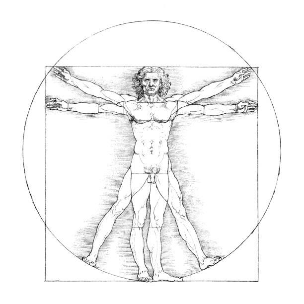 Vitruvianische Mensch B&W – Vektorgrafik