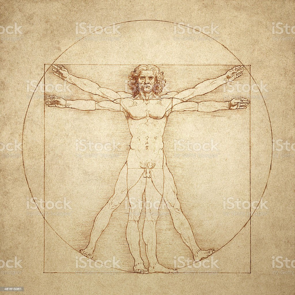 Vitruvian Man by Leonardo da Vinci vector art illustration