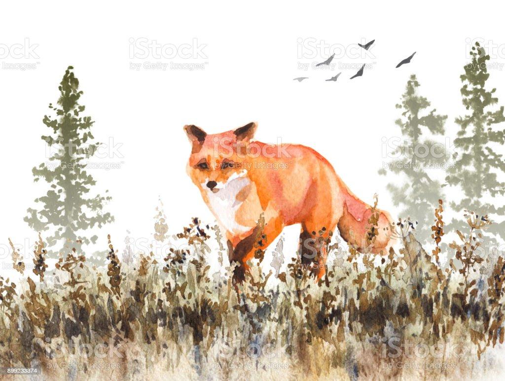 Walking Red Fox Sketch vector art illustration