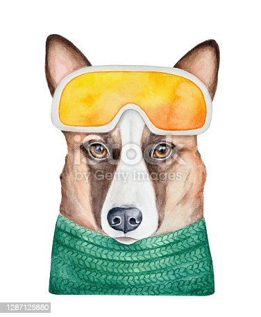Water color drawing of cute young dog portrait wearing bright ski goggles. Hand painted watercolour graphic illustration. Cut out clip art element for creative design decoration, greeting card, badge.