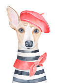 Water color portrait illustration of lovely dog wearing red french beret, classic knotted neck scarf and striped french tee-shirt. Hand painted watercolour sketchy graphic drawing on white background.