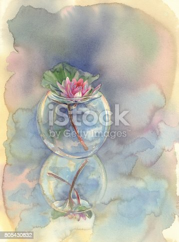 rose water lily in glass vase watercolor background