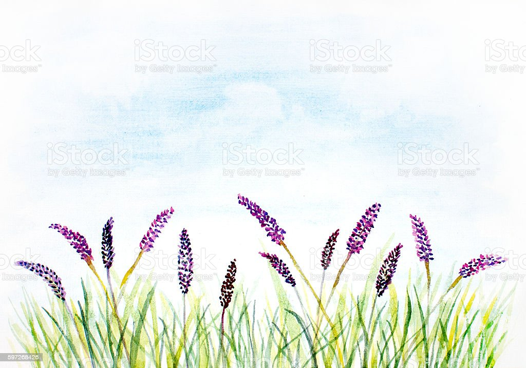watercolor abstract background with grass and violet flowers royalty-free watercolor abstract background with grass and violet flowers stock vector art & more images of art
