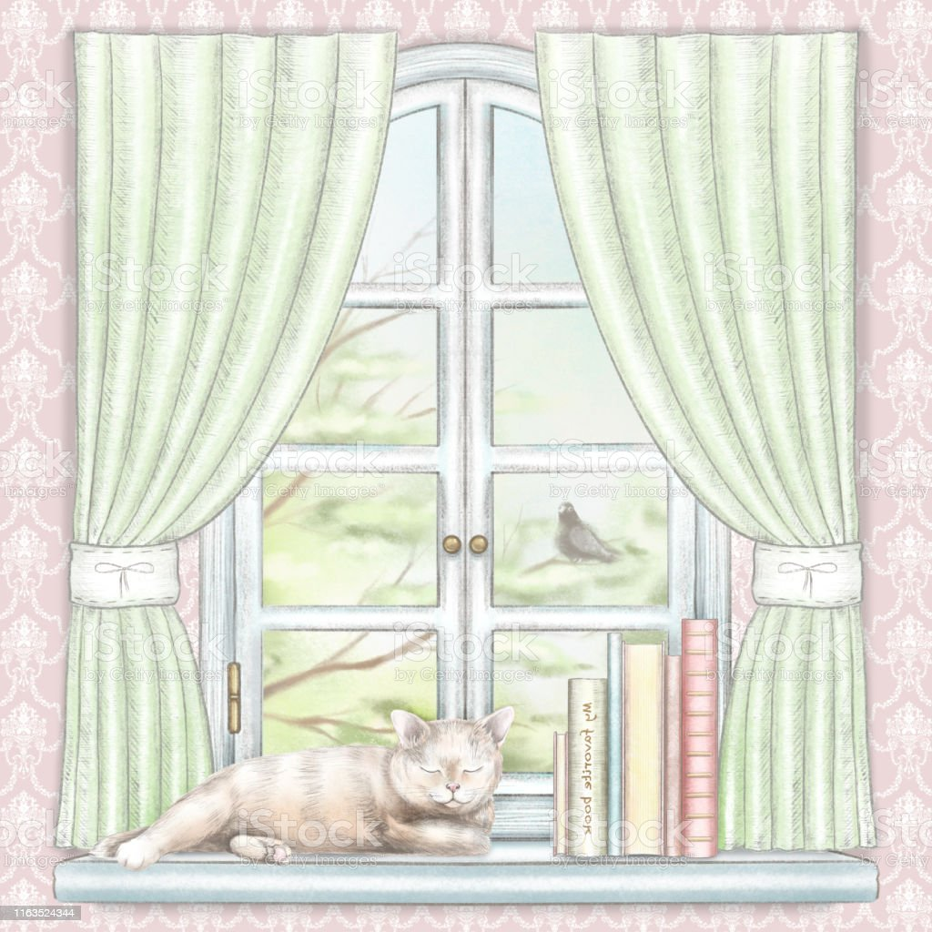 Composition with books and cat sleeping on the sill of the window...