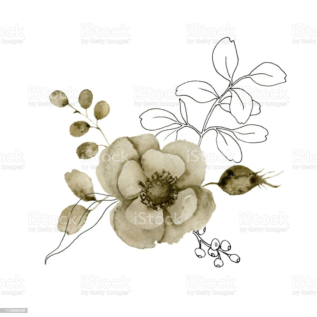 Feuille D Eucalyptus Bouquet bouquet danémone aquarelle et croquis fleurs et petits