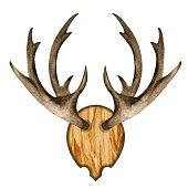 istock Watercolor antlers on wooden board 1282554143