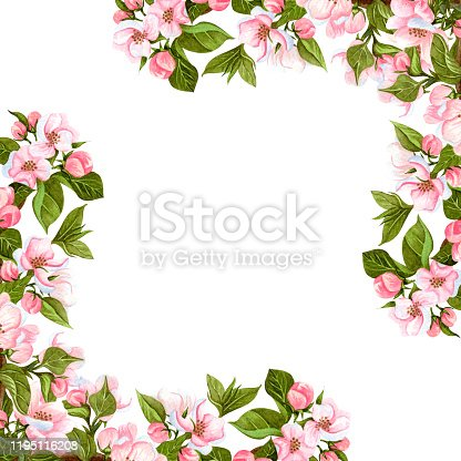 istock Watercolor apple blossoming tree frame isolated on white. Hand drawn floral corner wreath with flowers, leaves and buds. Perfect for invitations, design and wedding cards. 1195116208