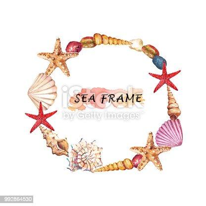 Deniz Kabukları Deniz Yıldızı Ve Taşlar Ile Sulu Boya Su Yuvarlak