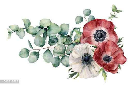 Watercolor asymmetric bouquet with anemone and eucalyptus. Hand painted red and white flowers, eucalyptus leaves and branch isolated on white background. Illustration for design, print or background