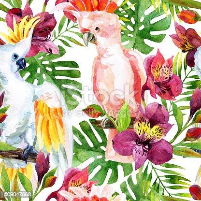 istock watercolor Australian Cockatoo seamless pattern 509047668