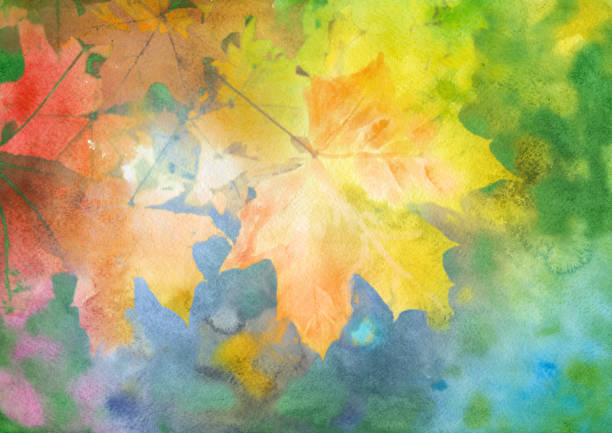 Watercolor autumn background Watercolor autumn background maple leaf illustrations stock illustrations