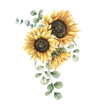 Watercolor autumn bouquet with sunflowers and silver dollar eucalyptus branches. Hand painted rustic card isolated on white background. Floral illustration for design, print, fabric or background.