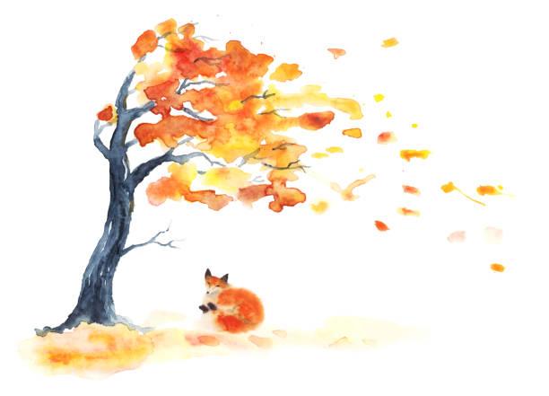 stockillustraties, clipart, cartoons en iconen met aquarel herfst boom met gele en oranje bladeren en rode pluizige schattige vos op wit. - mini amusementpark