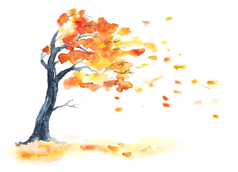 Watercolor Autumn Tree With Yellow And Orange Leaves Stock ...