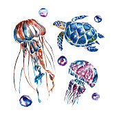 Watercolor background  with jellyfish and turtles