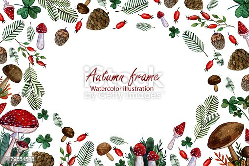 Watercolor background with leaves, mushrooms, Christmas tree branches and rosehip berries. Autumn frame for cards and invitations.