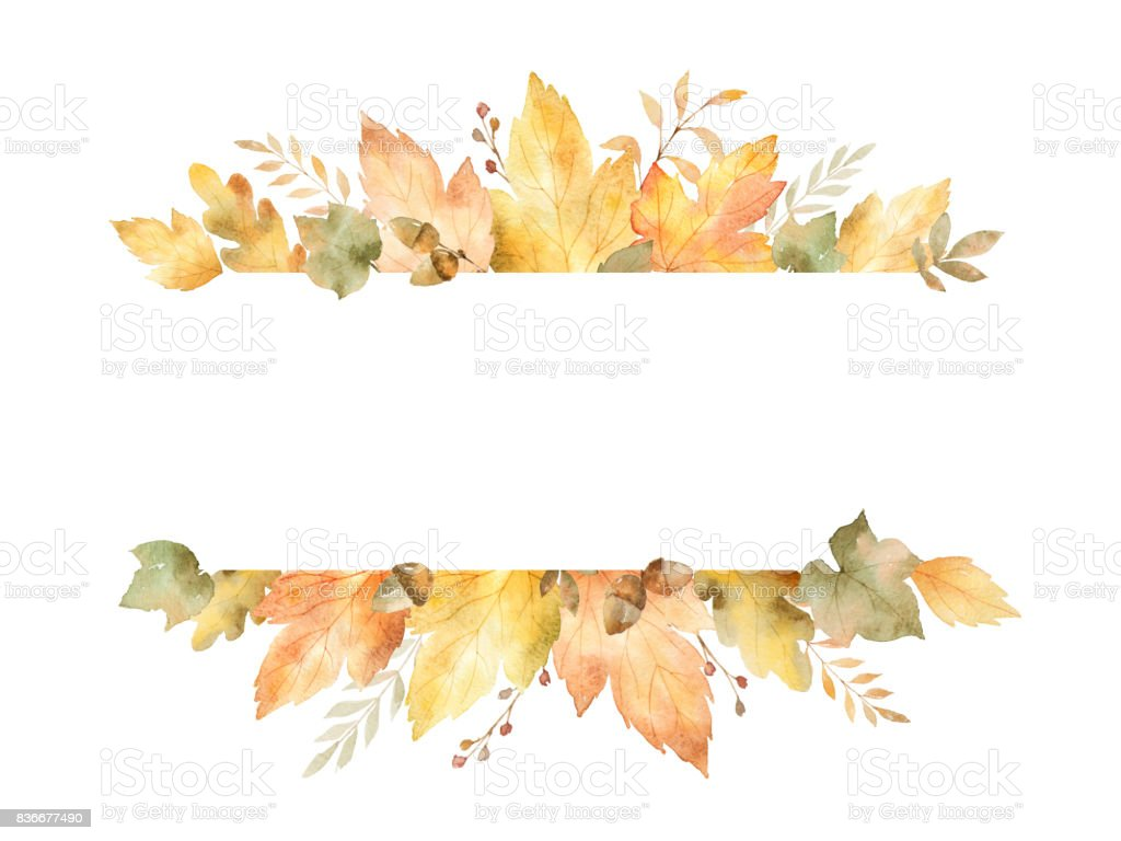 Watercolor Banner Of Leaves And Branches Isolated On White ...