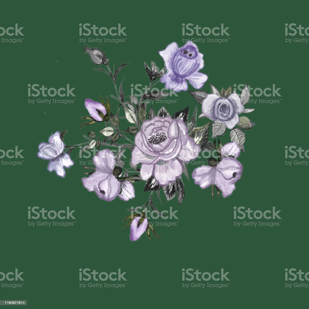 Watercolor. Beautiful illustration of watercolor roses painted on...