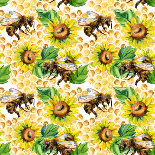 illustrazioni stock, clip art, cartoni animati e icone di tendenza di watercolor bees, flowers and honeycombs seamless pattern - impollinazione