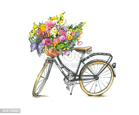 Watercolor Bicycle With Flowers In Basket stock vector art ...