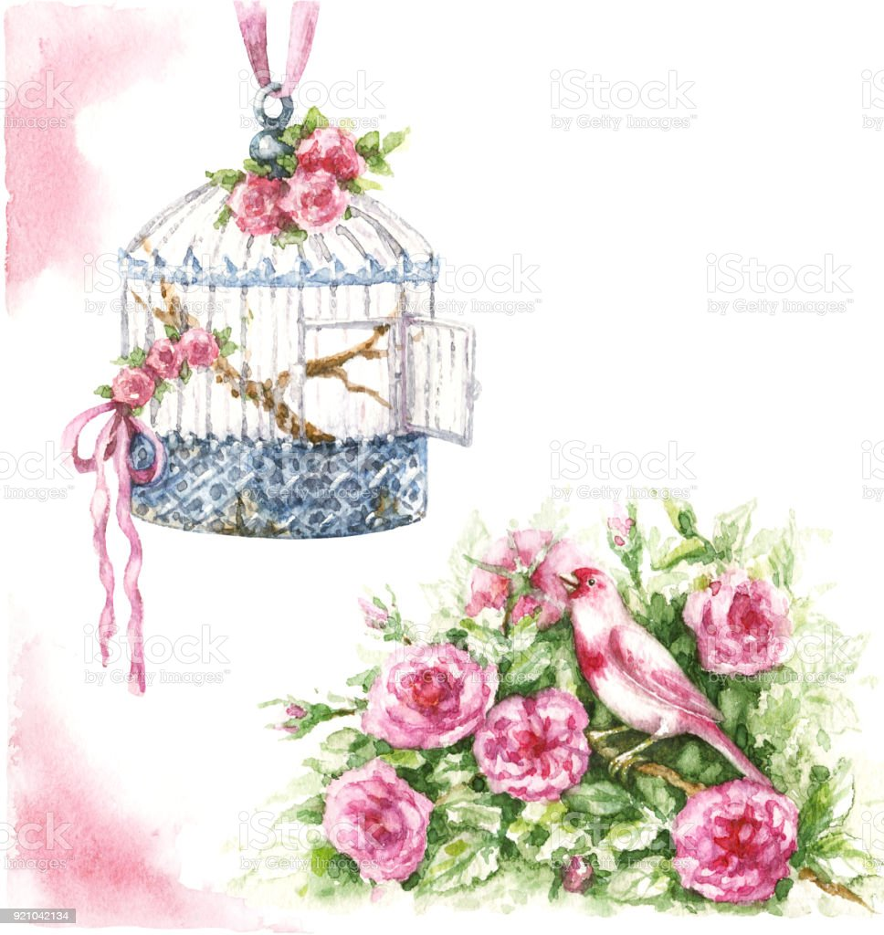 Watercolor Bird Cage And Flowers Royalty Free Stock Vector