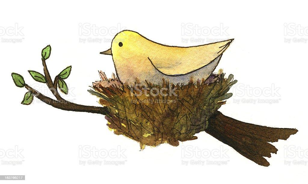 Watercolor Bird in Nest vector art illustration