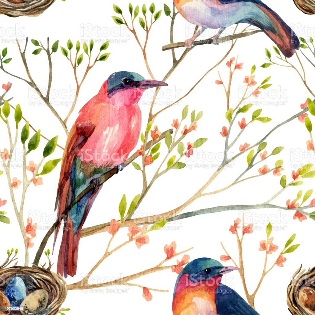Watercolor birds on the blossoming trees vector art illustration
