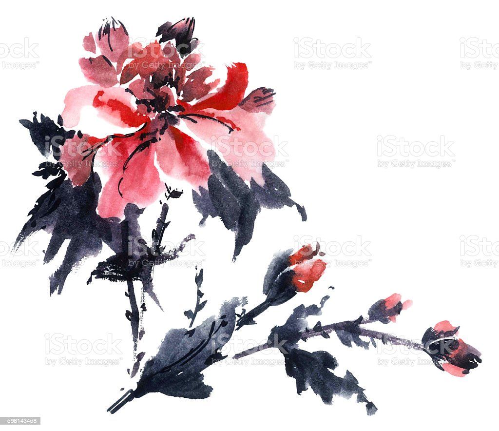 Watercolor blossom peony vector art illustration