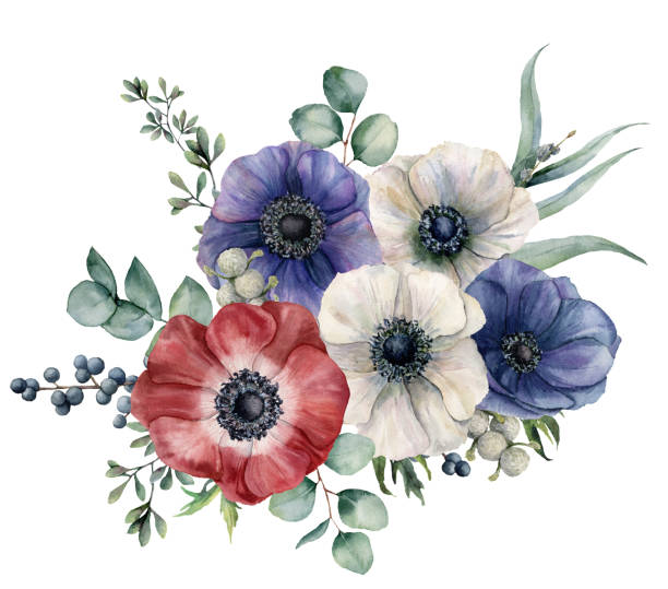 Muted Blue And Floral Red: Sea Anemone Illustrations, Royalty-Free Vector Graphics