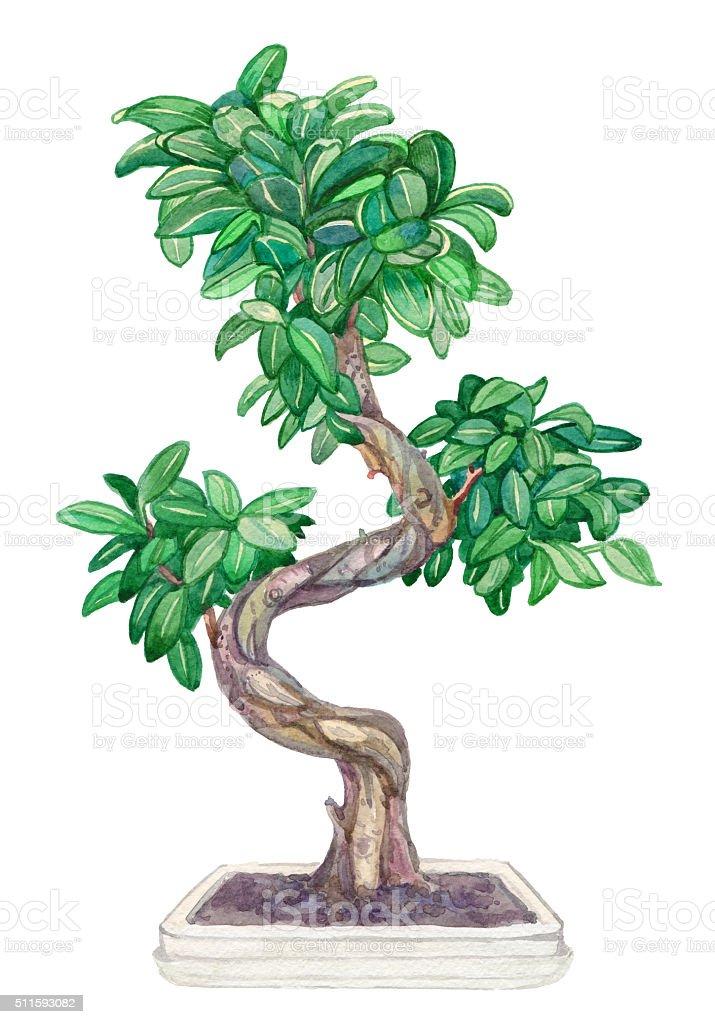 Japanese bonsai tree painting