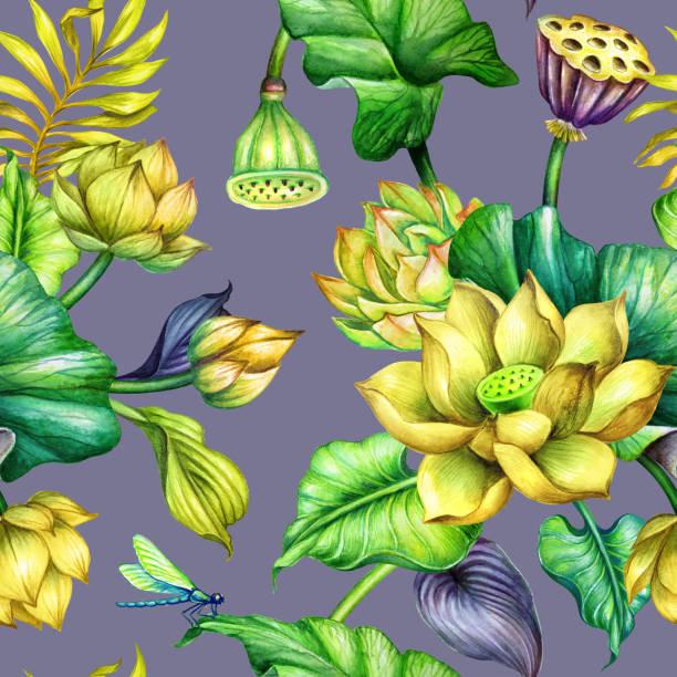 Clip Art Of Hawaiian Flower Border Illustrations, Royalty ...
