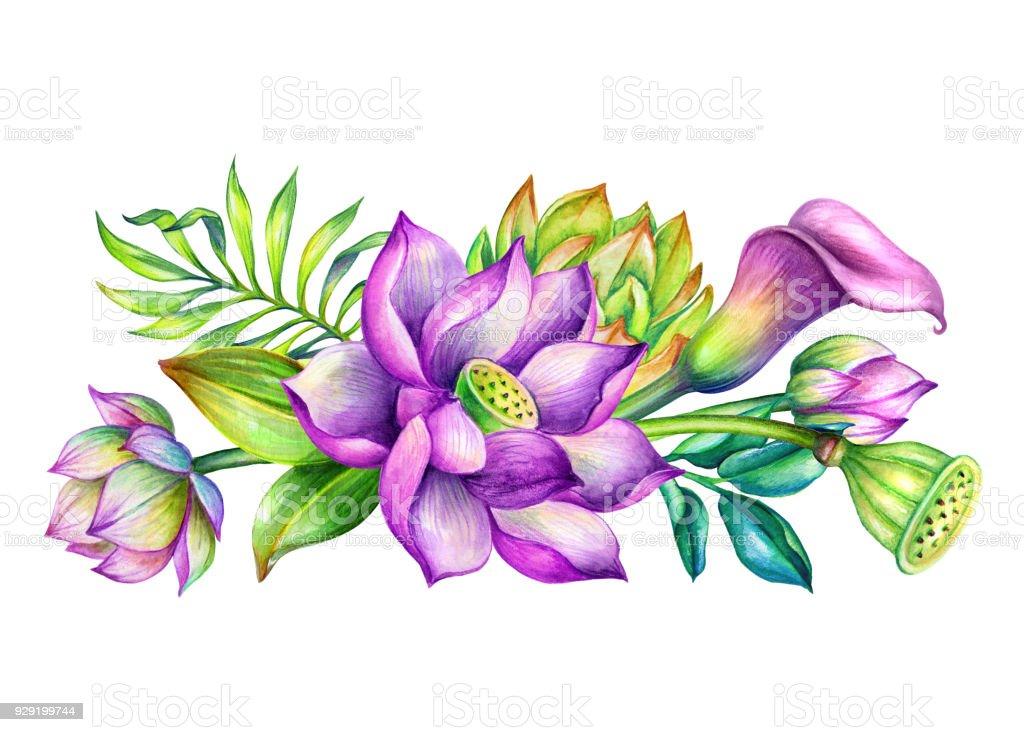Aquarell Botanische Illustration Tropischen Blumenarrangement Grenze
