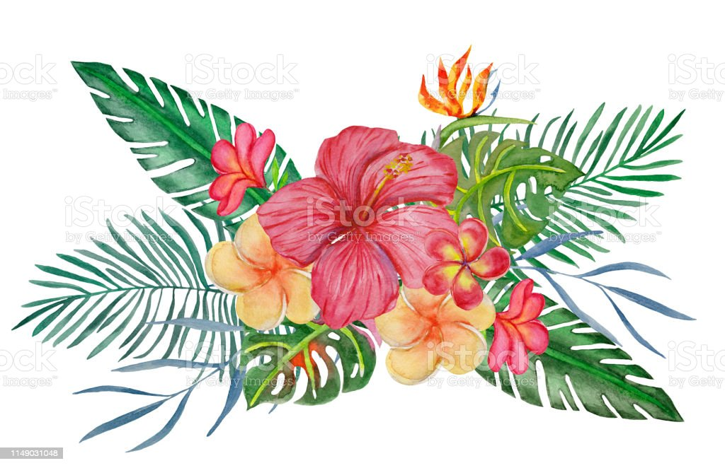 Ilustración De Bouqet De Acuarela Con Flores Y Hojas