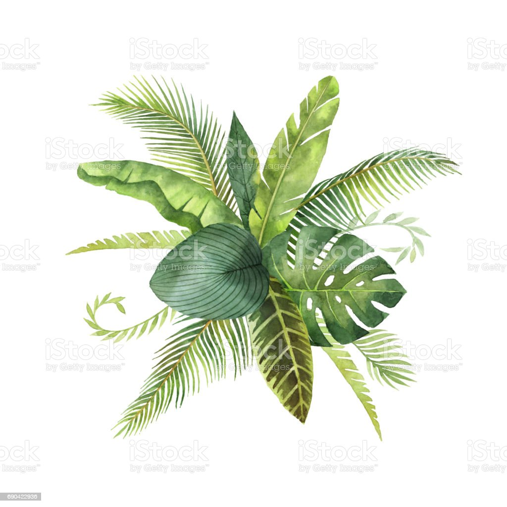 Watercolor bouquet tropical leaves and branches isolated on white background. vector art illustration