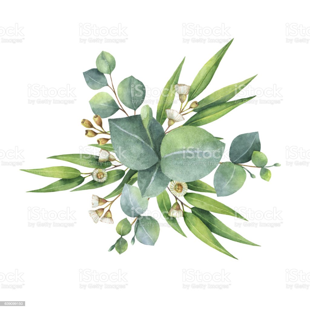 Watercolor bouquet with green eucalyptus leaves and for Watercolor greenery