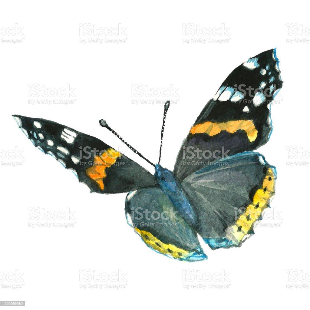 Watercolor butterfly illustration vector art illustration