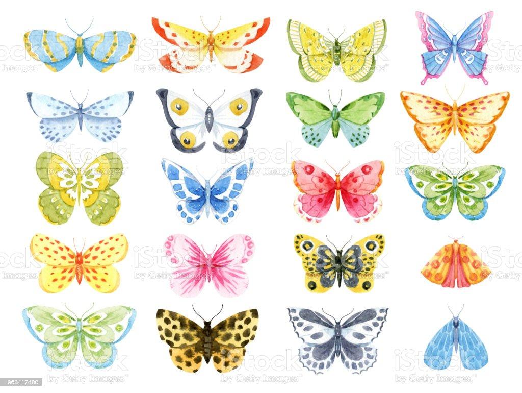 Watercolor butterfly set - Zbiór ilustracji royalty-free (Akwarela)