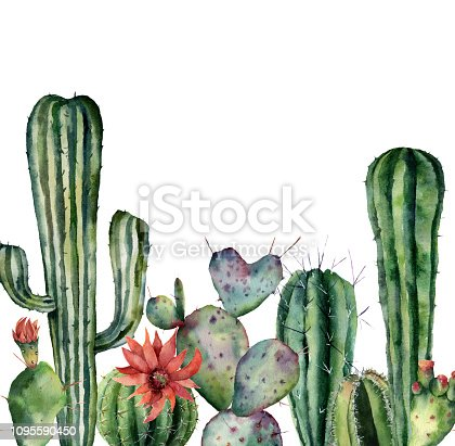 Watercolor card with cactus. Hand painted print with desert plants isolated on white background. Flowering cacti card for design, print. Nature botanical illustration.