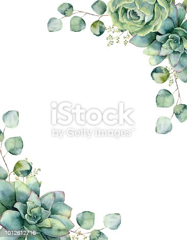 istock Watercolor card with exotic bouquet. Hand painted eucalyptus branch and leaves, green succulents isolated on white background. Floral botanical illustration for design, print or background. 1012612716