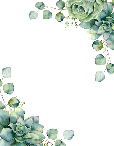Watercolor card with exotic bouquet. Hand painted eucalyptus branch and leaves, green succulents isolated on white background. Floral botanical illustration for design, print or background.