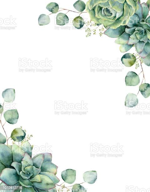 Watercolor card with exotic bouquet. Hand painted eucalyptus branch and leaves, green succulents isolated on white background. Floral botanical illustration for design, print or background