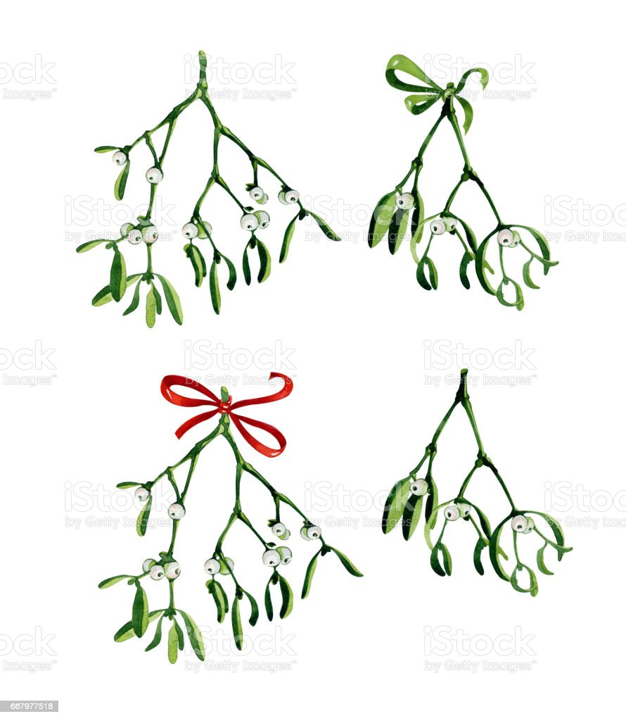 Watercolor christmas branch of mistletoe stock vector art more watercolor christmas branch of mistletoe royalty free watercolor christmas branch of mistletoe stock vector buycottarizona Image collections