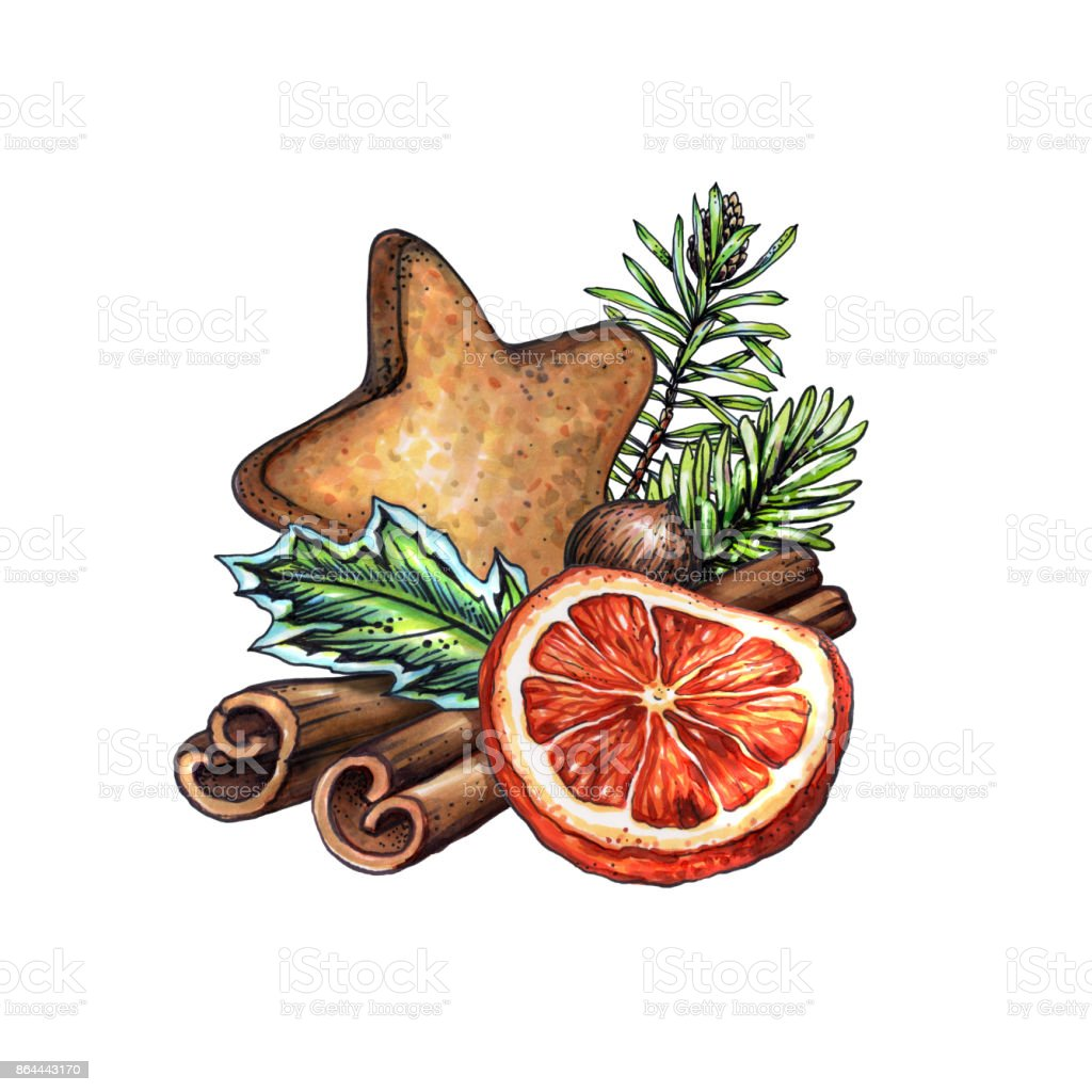 Sulu Boya Noel Süsleme Süslü çam Koni Illüstrasyon Zencefilli